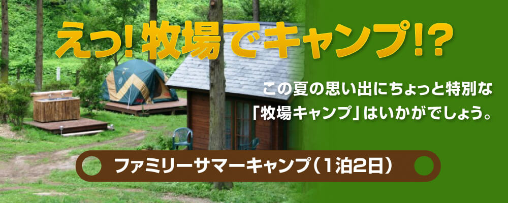 Family summer camp (2 days and 1 night)