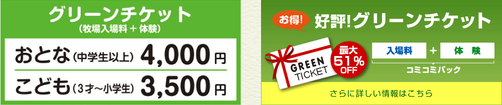 Green ticket